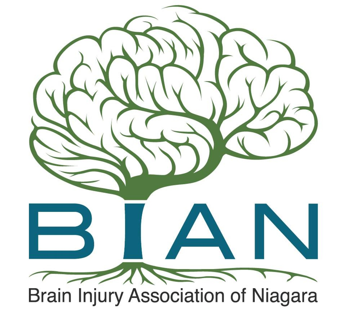 Brain Injury Association of Niagara logo